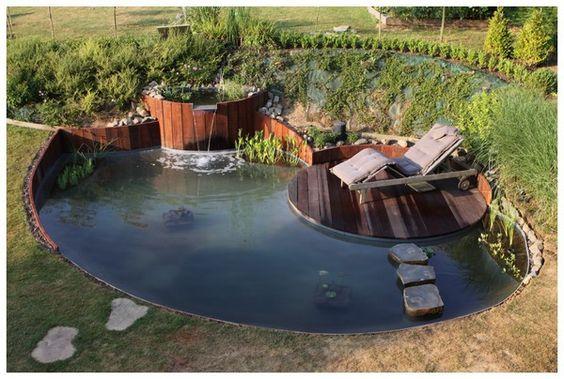 Forum aquajardin bassin ko jardin aquatique mare for Bac etang jardin