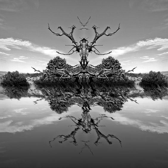 Rough Gods by Steve Kaminski