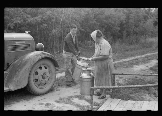 10. Mrs. Howard in Aitkin Country, MN makes her living selling the milk from her small farm in 1939.