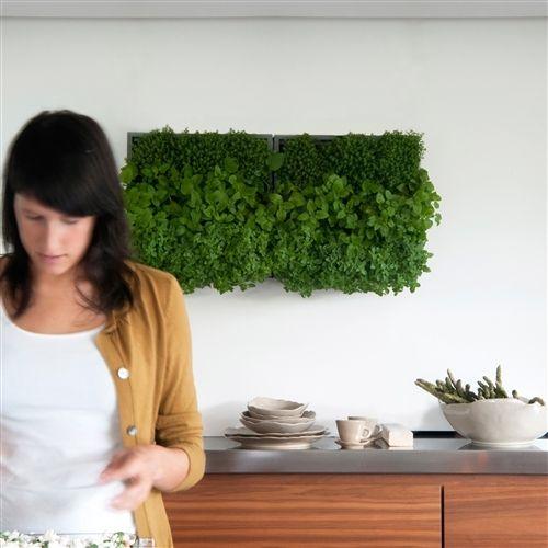 Groen! Verticale plantenbak voor binnen.