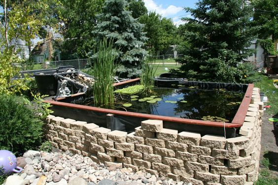 Diy ponds pond in louisville kentucky for Koi pond builders near me