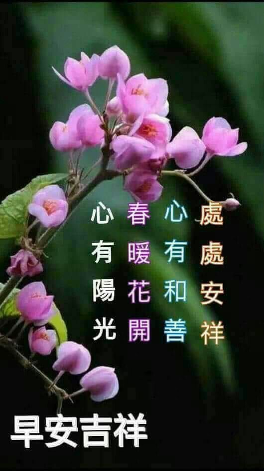 Pin By May Chua On Good Morning Wishes In Chinese Morning