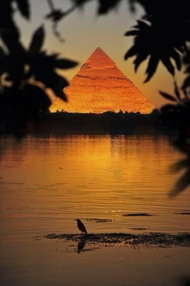 Sunset over the Egyptian pyramids y el río Nilo. Egipto**