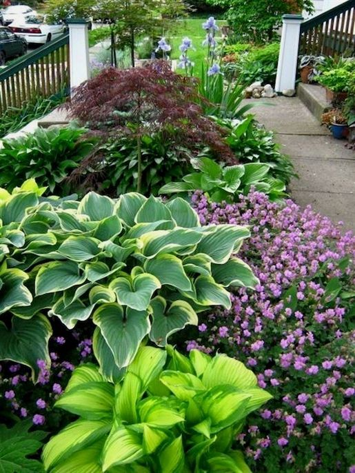 Discover Recipes Home Ideas Style Inspiration And Other Ideas To Try Shade Garden Front Yard Landscaping Cheap Landscaping Ideas