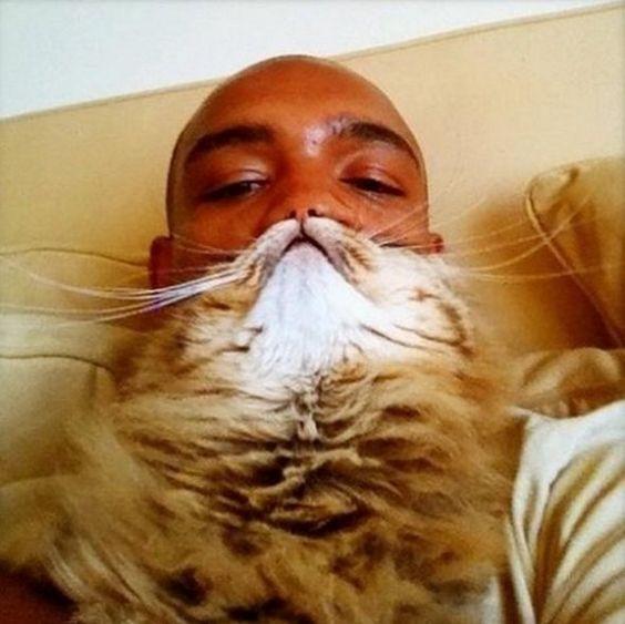 Cat Beard?!?!?