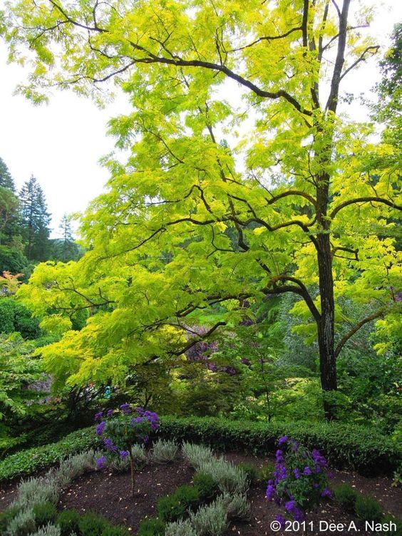 Butchart Gardens in Victoria, B.C.