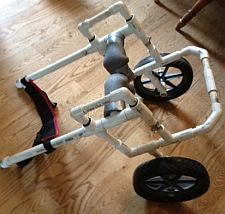 PVC dog wheelchair built from our plans PLANS FOR WHEELCHAIRS FOR PUPS