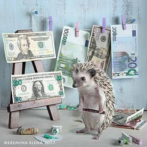 Ohhh... hedgehog is a millionaire!)))