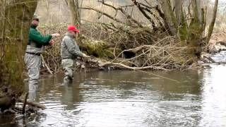 vliegvissen duitsland - YouTube