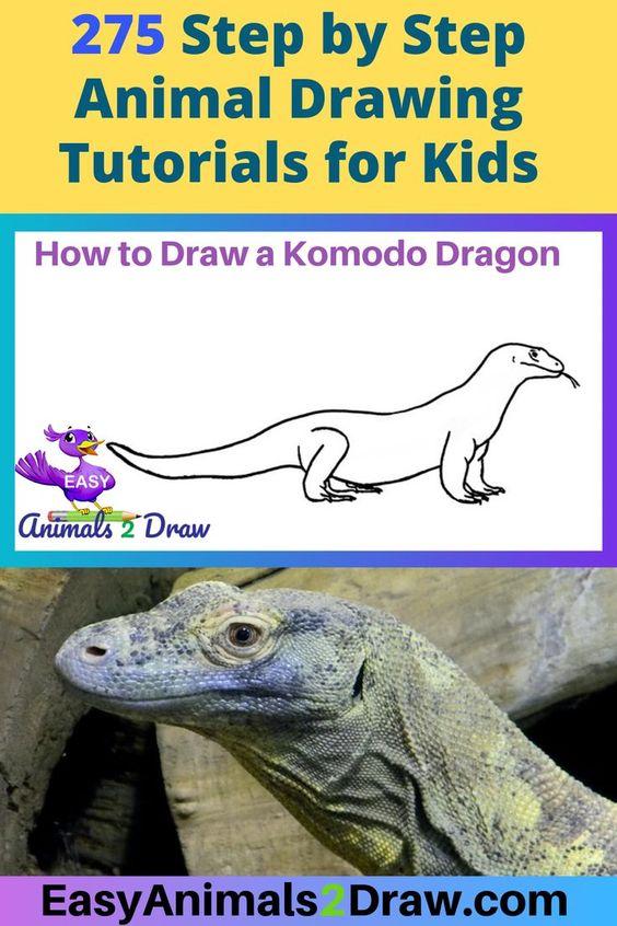 Learn How To Draw An Amazing Komodo Dragon With This Easy And Inspirational Step Komodo Dragon Komodo Easy Animals