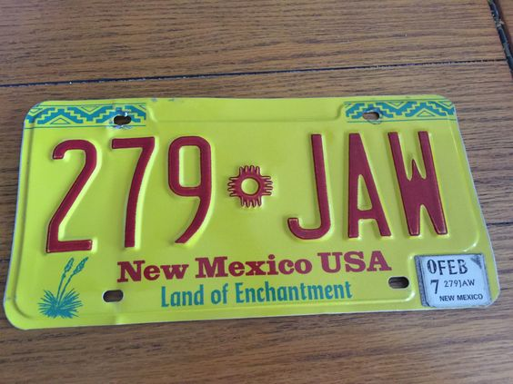 New Mexico Standard Issue