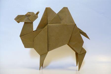ラクダ 1.1 / Camel 1.1   by KOSUGE Akihiro