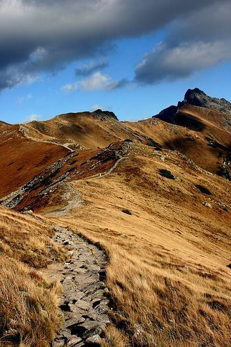 Tatry mountains, Poland. Looks like a path the hobbit and friends walked.: