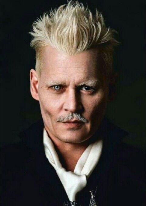 Gellert Grindelwald Harry Potter Wiki Fandom Johnny Depp Johnny Depp Characters Johnny Depp Movies
