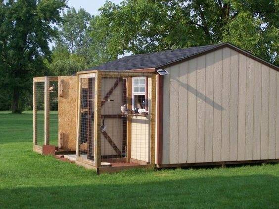 Pinterest the world s catalog of ideas for Old farm chicken coops