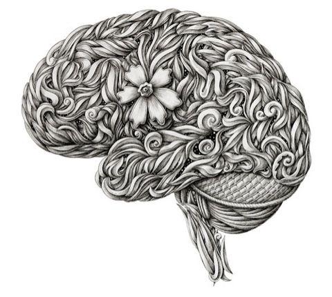 brain flower #illustration #anatomy