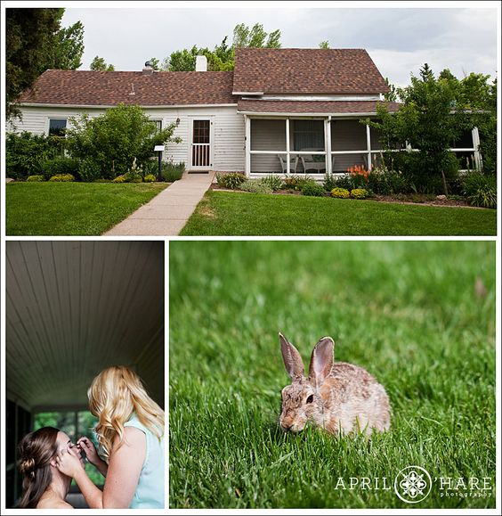 An exterior view of the Polly Steele Nature Center and a shot of the wildlife that hangs out all over Chatfield Botanic Gardens. That covered patio is a great area for many different kinds of wedding day photos.  I often photograph the details out there. @denverbotanic  - April O'Hare Photography http://www.apriloharephotography.com #ChatfieldBotanicGardens #LittletonWedding #ColoradoWedding #DenverWeddingPhotographer