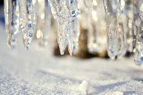 Mistletoe And Flakes Of Snow