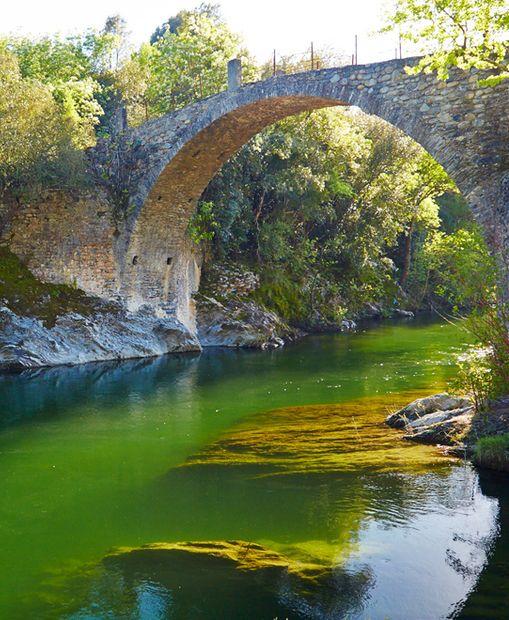 La Corse, une ile pourtant si proche de nos frontières et portant nos couleurs, mais à chaque visite c'est le même constat: quel dépaysement ! La Corse vous transporte dans son univers et vous offre ce goût d'ailleurs. À chaque jour, son festival de couleurs.
