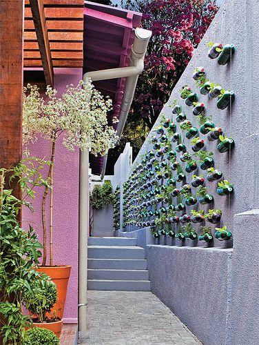 Faça uma horta de parede com garrafas PET                                                                                                                                                     Mais
