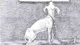 OK: Make it illegal to leave dogs chained outside, strengthen animal cruelty…