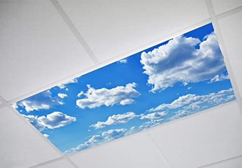 Enjoy Exclusive For Octo Lights Fluorescent Light Covers 2x4 Flexible Ceiling Light Diffuser Panels Decorative Clouds Classrooms Offices 001 Online In 2020 Fluorescent Light Covers Fluorescent Light Diffuser Ceiling Light Covers