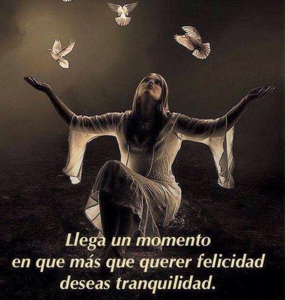 ===Mi felicidad es...=== 00e826237913bf1c4dd70be87725f861