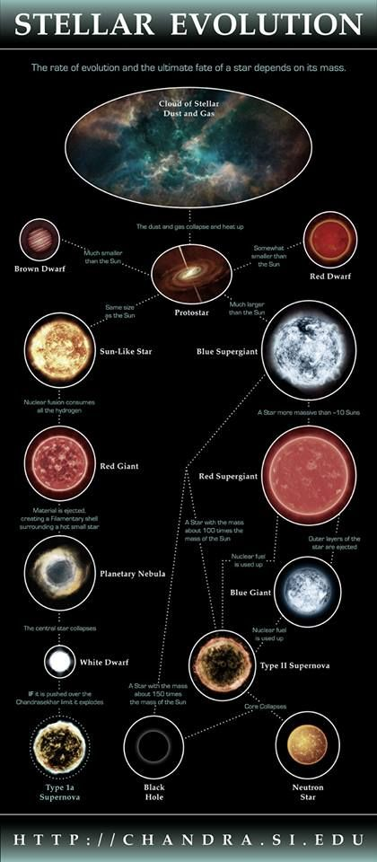 The evolution of stars in our Universe. Full size (and printable) version of this and other Astronomy Infographics.: