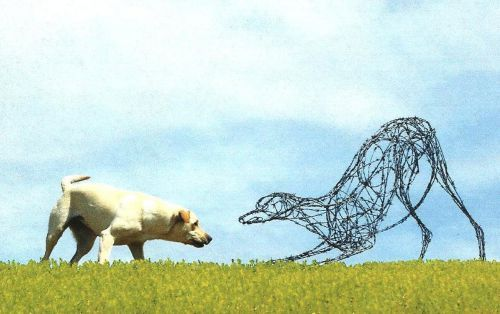 Galvanized barbed wire with steel frame Wire Sculptures #sculpture by #sculptor jo burchell titled: 'Lazy Stretch (Metal Wire Lurcher Hound life size statues)' £1417 #art