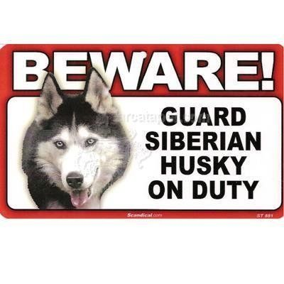 How do you make a dog a guard dog?