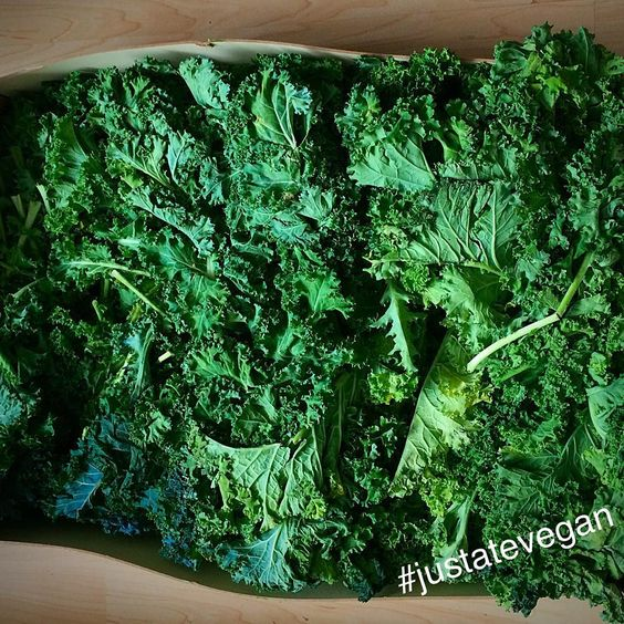 Kale will never make you frail it's green and fit and strong, you can put it in your smoothies or crunch it all day long. Kale can be red however we prefer it green it fills us with nutrients and makes us fit and lean.... Can you guys continue our kale love rhyming poem? One line each....GO comment  #justatevegan