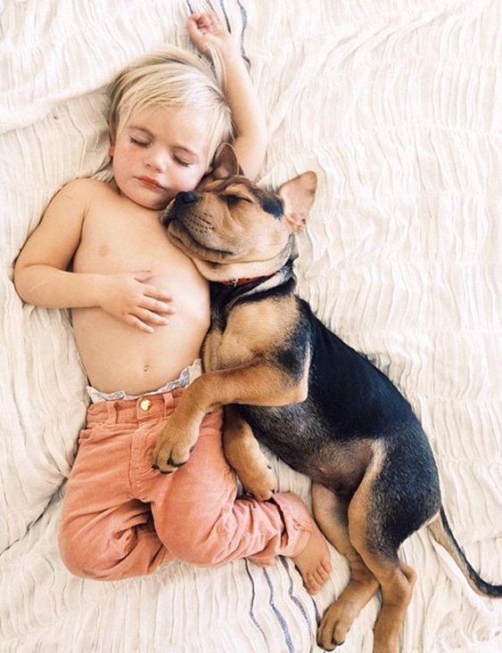 12 vídeos que provam que ter nenê e cachorro é uma boa ideia wnli.st/1OdLCw0