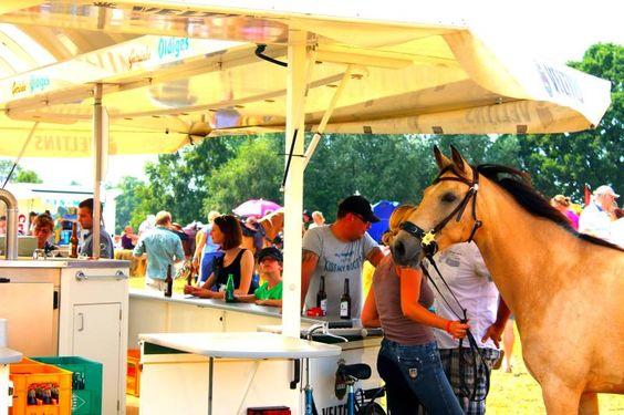www.chevalie.de  Westernfestival auf Junkern Beel