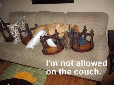 Not allowed...  ha!
