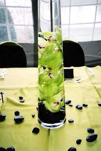 Cymbidium Orchids In Lime Green For Centerpiece And Black Rocks Or Blue Orchids And