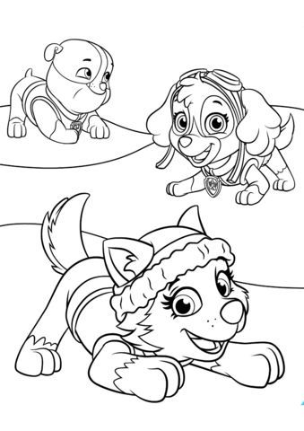 Everest Plays With Skye And Rubble Coloring Page Com Imagens