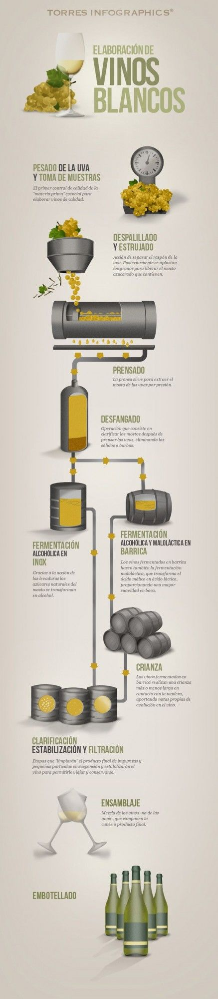infografia-vino-blanco