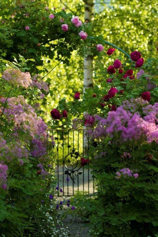 Jolie Entree De Jardin Romantique Beaux Jardins Jardin