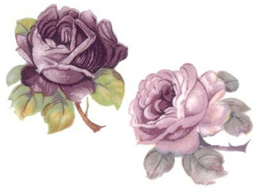 MiXeD PuRpLe &  LaVenDeR CaBbaGe RoSeS ShaBby WaTerSLiDe DeCALs
