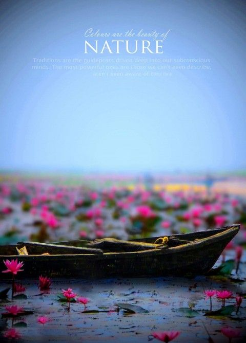 Nature Boat Manipulation Editing Background Hd Photo This Is Hd Cb Background Cb E Editing Background Photoshop Digital Background Dslr Background Images