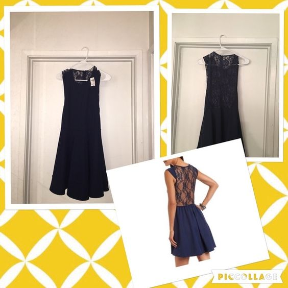 Charlotte Russe skater dress *new* Navy blue skater dress. Lace back.  W/ Tags **size large** Charlotte Russe Dresses Mini