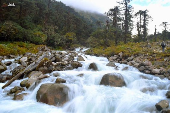 Goecha La Trek, a dream for adventure lovers. A dream for adventure lovers, the Goecha La Trek located in Sikkim, is a high mountain pass in the Himalayan range originating from Yuksom.