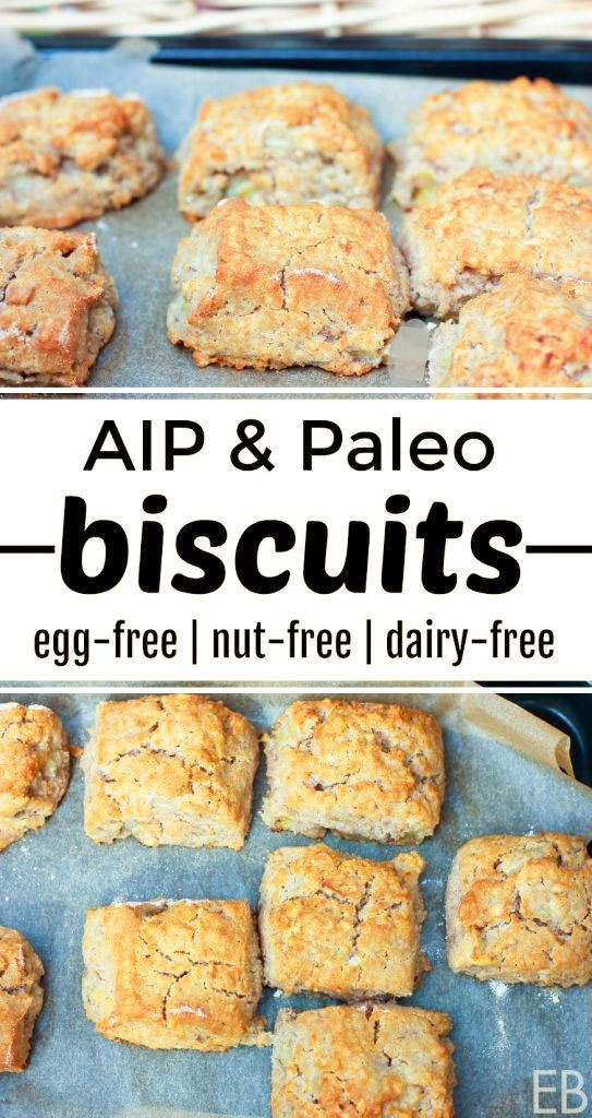 Aip Biscuits Egg Free Paleo Recipe Dairy Free Recipes Food