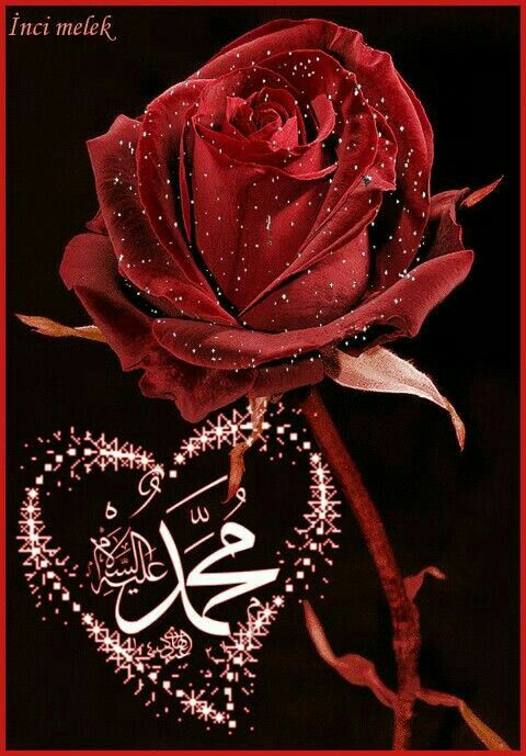 Pin By عنود البلاجي On Ahlebait A S Beautiful Art Pictures Islamic Art Calligraphy Allah Calligraphy