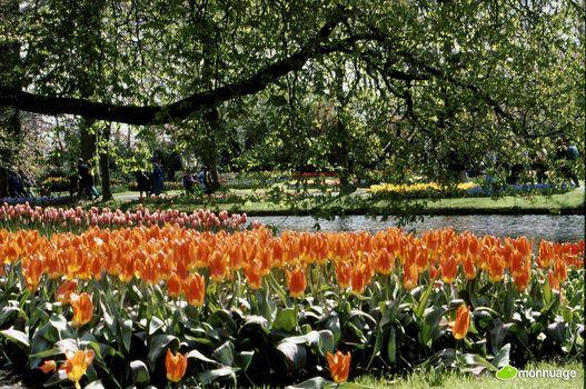 Les 10 plus beaux jardins du monde (PHOTOS)
