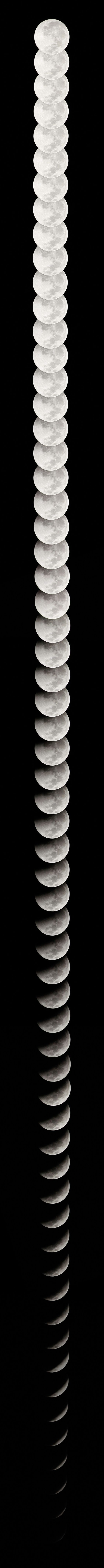 Lunar Eclipse 2010, via Daily Dose of Imagery