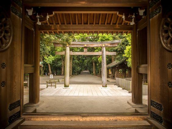 Temple à Tokyo, parc Yoyogi #Japon #tokyo #temple #sacre #religion #voyage