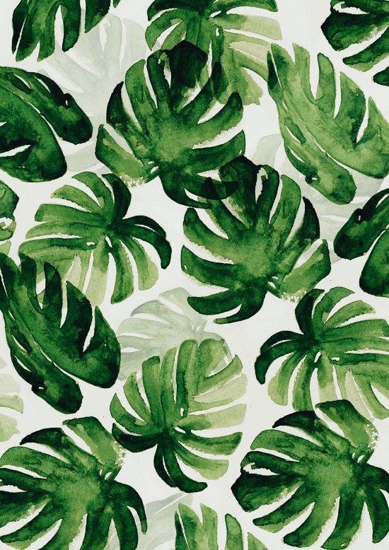 Leaf Background Ilustrasi Daun Kertas Dinding Gambar