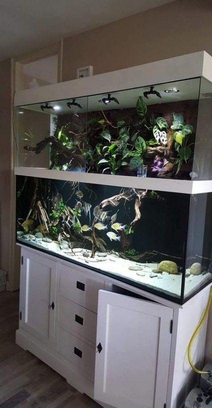 Tryaquariumdiy Freshwater Aquarium Ideas Super Fish Tank