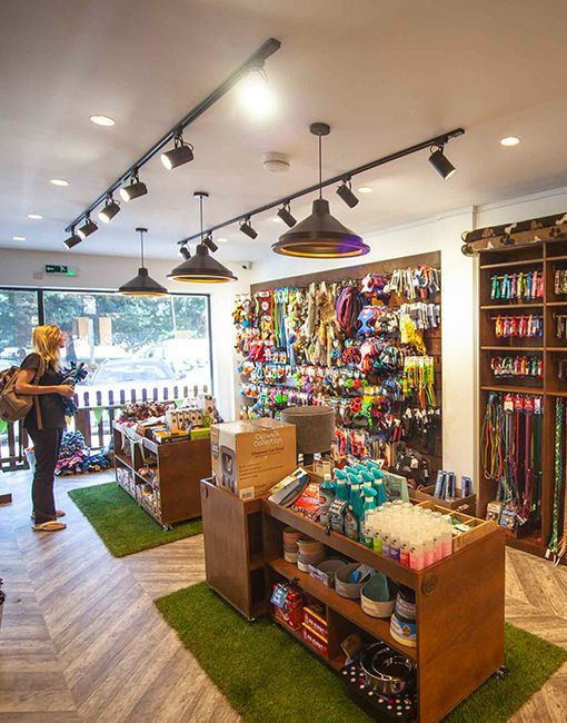 Cats And Kittens Store Ideas Pet Store Ideas Animals And Pets Snowball Pets Pet Society Snowball Sec In 2020 Pet Store Ideas Pet Store Design Pet Store Display